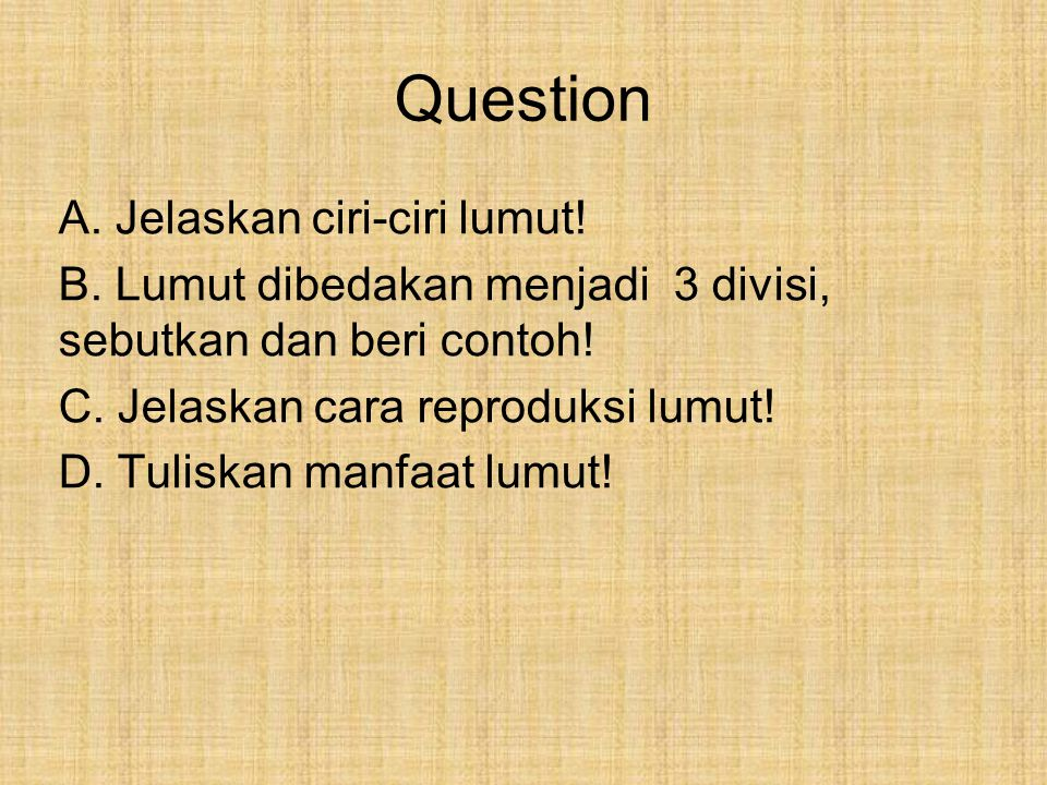 Question A. Jelaskan ciri-ciri lumut!