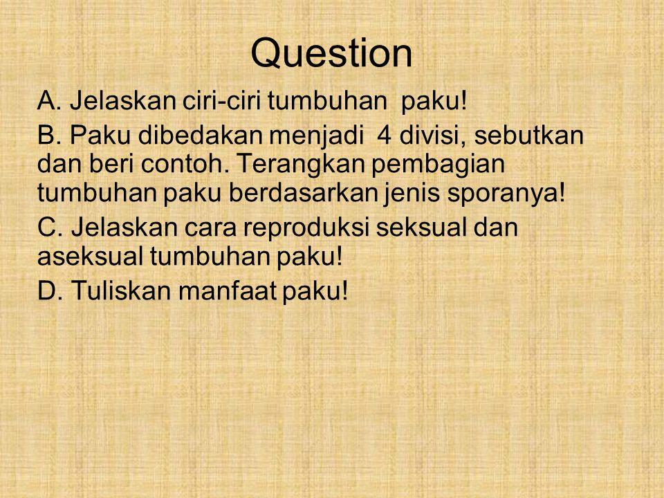 Question A. Jelaskan ciri-ciri tumbuhan paku!