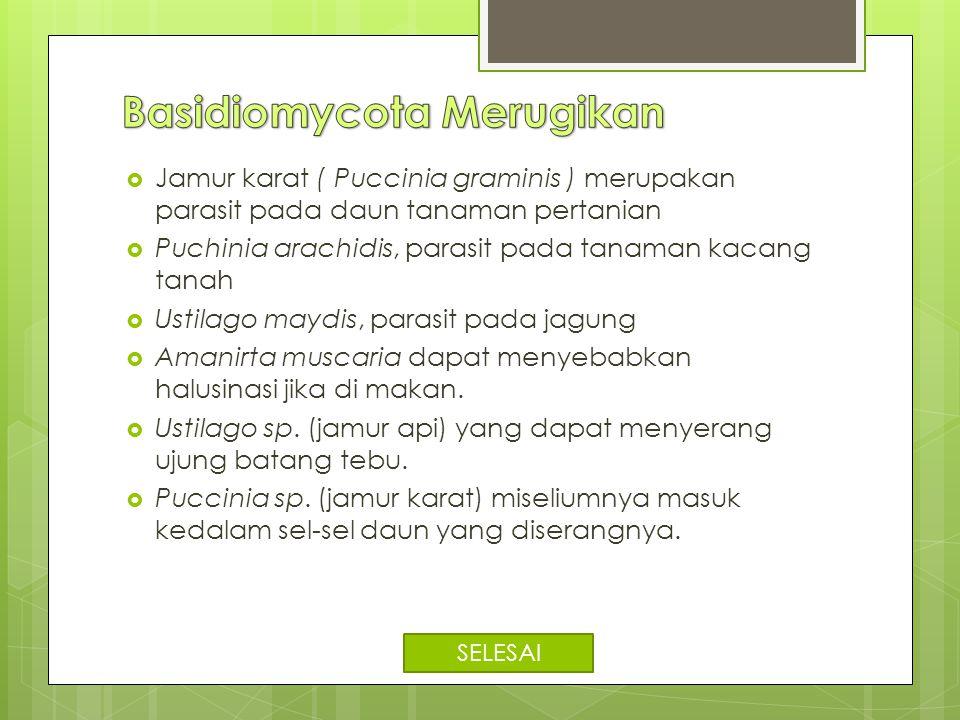 Basidiomycota Merugikan