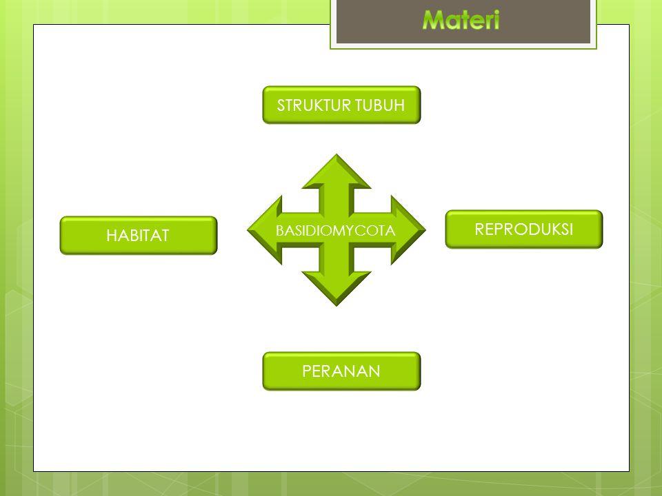 Materi STRUKTUR TUBUH BASIDIOMYCOTA REPRODUKSI HABITAT PERANAN