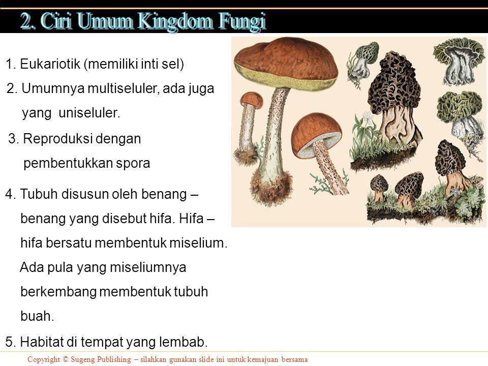 2. Ciri Umum Kingdom Fungi