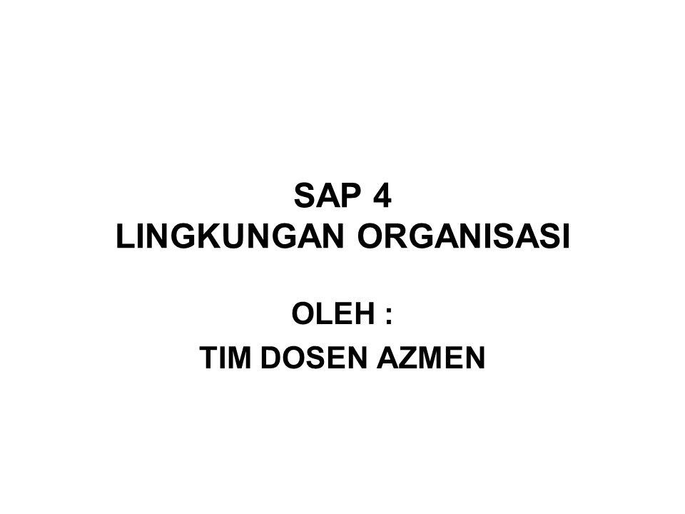 SAP 4 LINGKUNGAN ORGANISASI