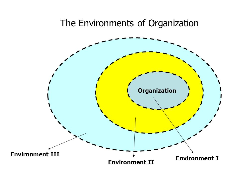The Environments of Organization