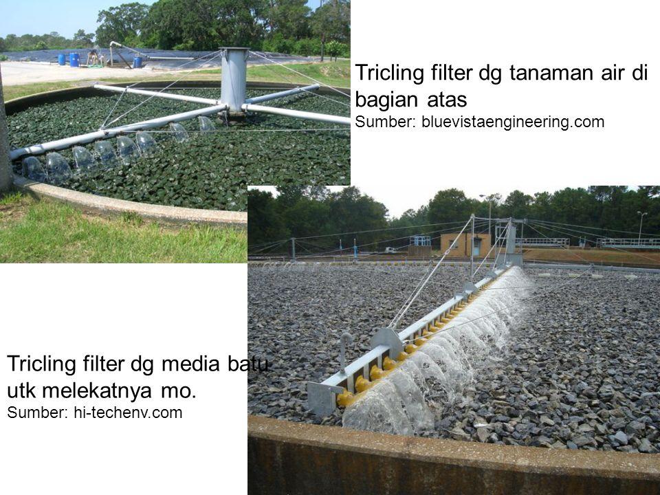 Tricling filter dg tanaman air di bagian atas