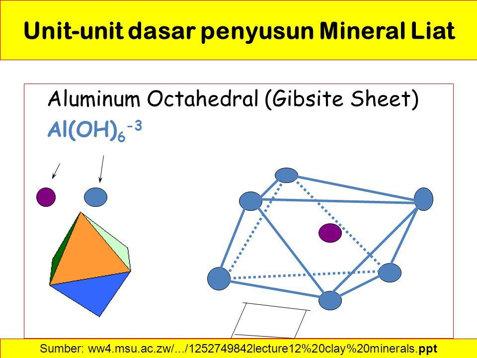 Unit-unit dasar penyusun Mineral Liat