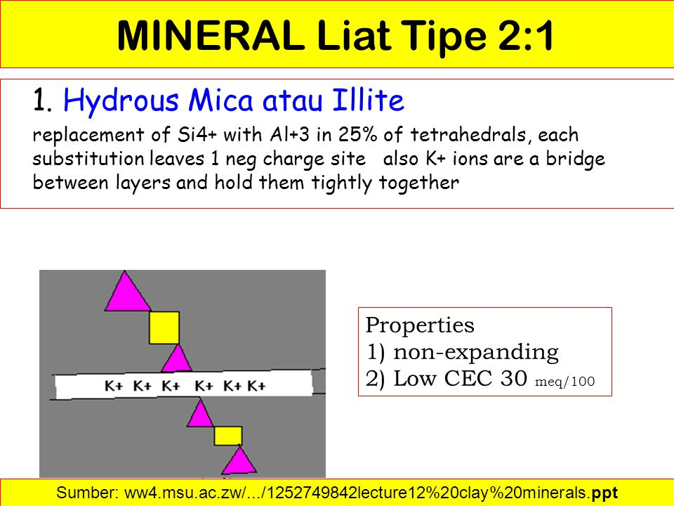 Sumber: ww4.msu.ac.zw/.../1252749842lecture12%20clay%20minerals.ppt‎