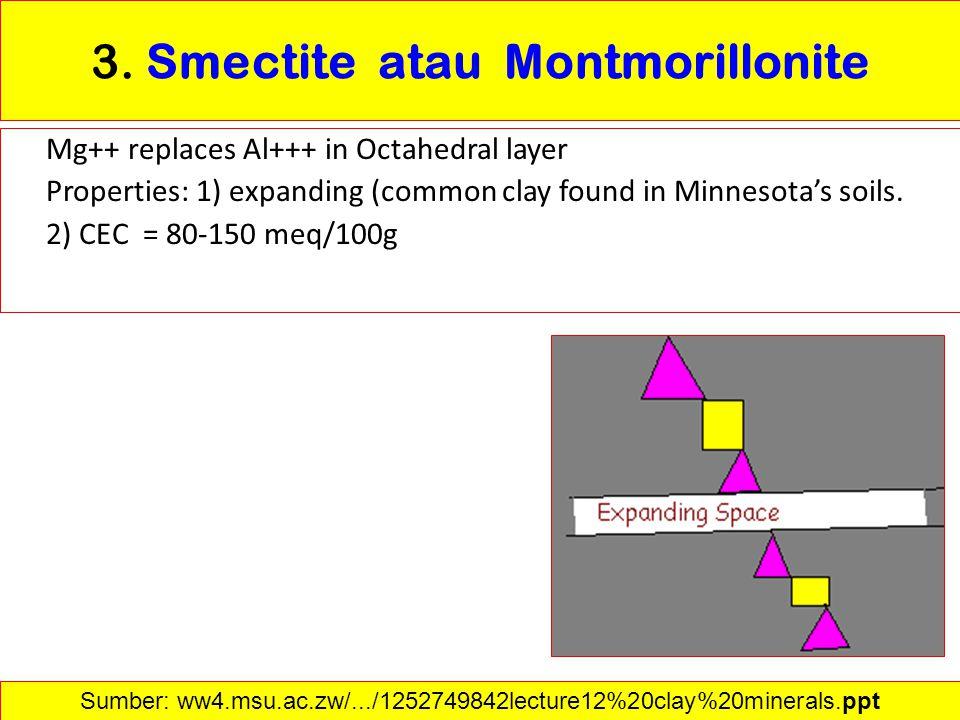 3. Smectite atau Montmorillonite