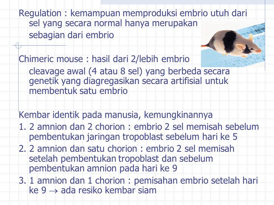 Regulation : kemampuan memproduksi embrio utuh dari sel yang secara normal hanya merupakan