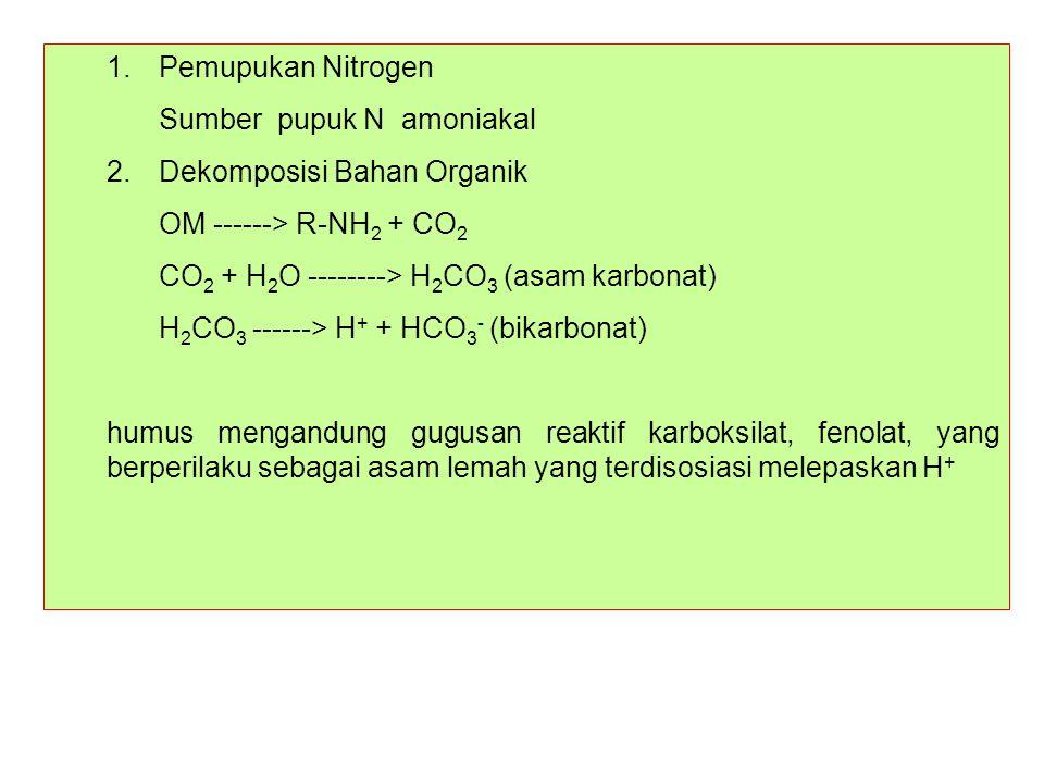 1. Pemupukan Nitrogen Sumber pupuk N amoniakal. 2. Dekomposisi Bahan Organik. OM ------> R-NH2 + CO2.