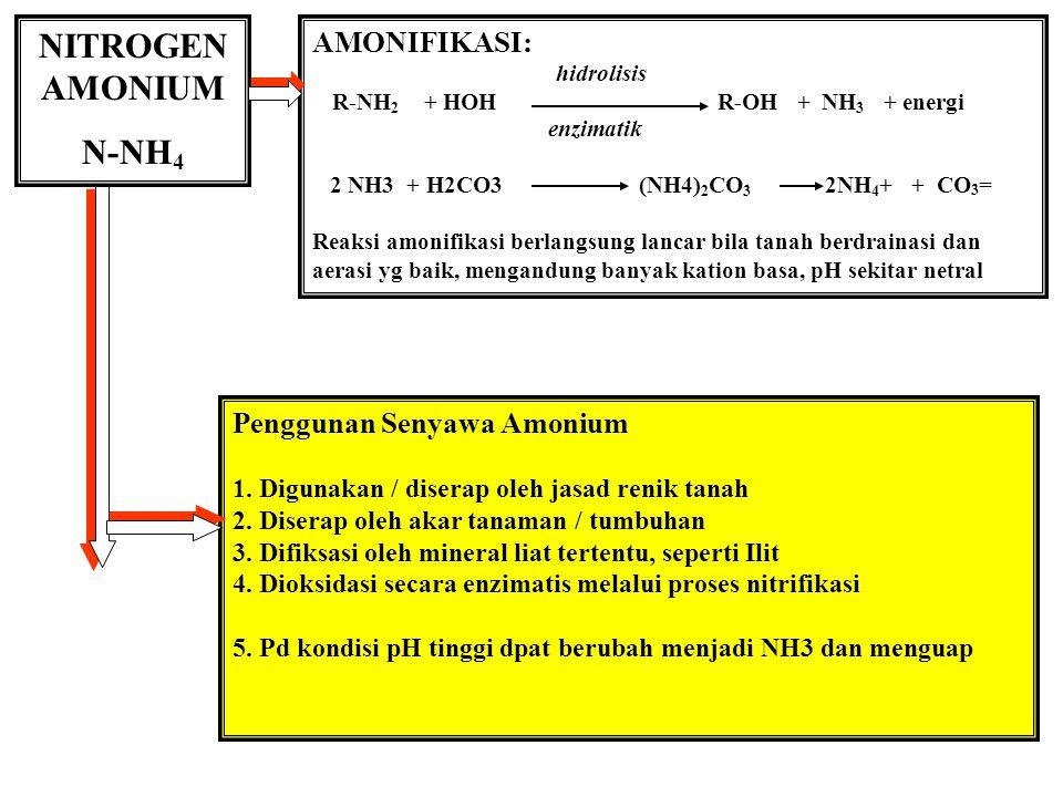 NITROGEN AMONIUM N-NH4 AMONIFIKASI: Penggunan Senyawa Amonium