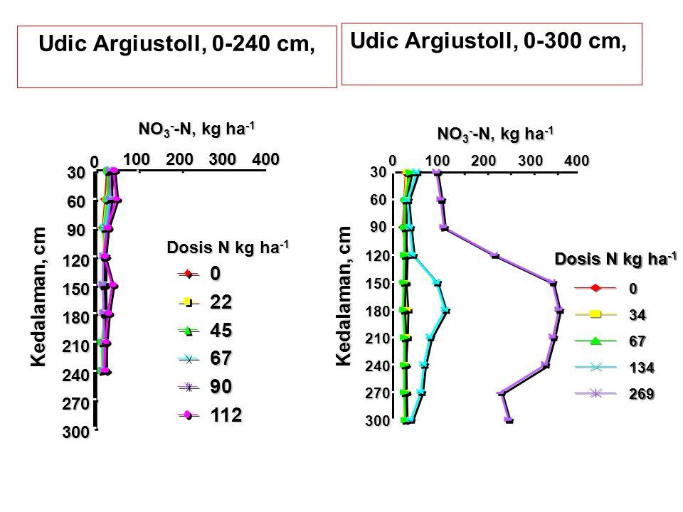 Udic Argiustoll, 0-240 cm, Udic Argiustoll, 0-300 cm,