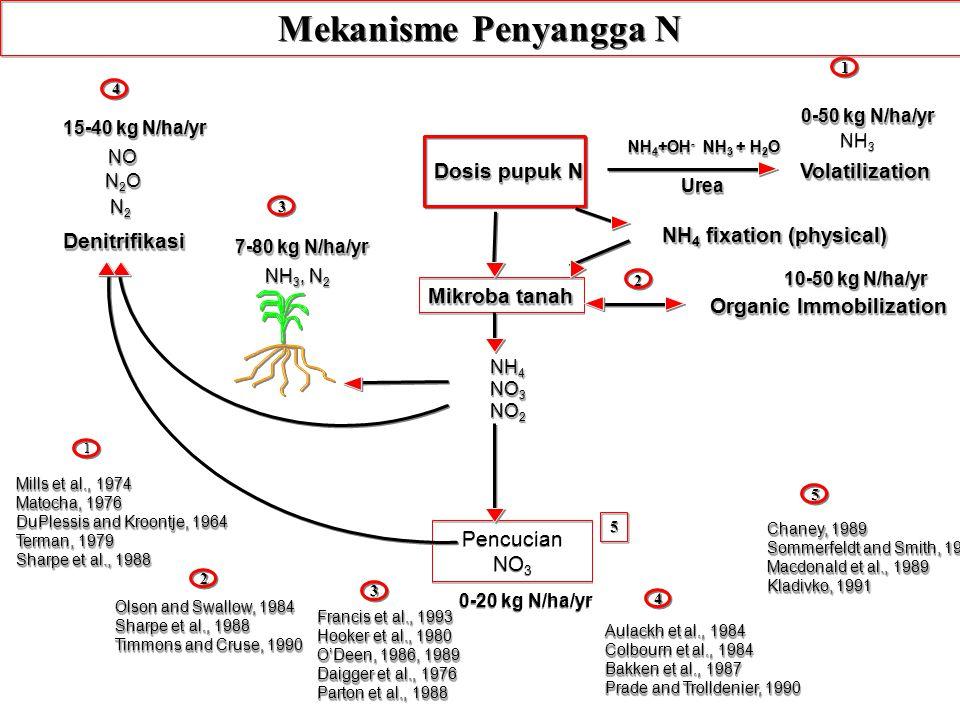 Mekanisme Penyangga N Dosis pupuk N Volatilization