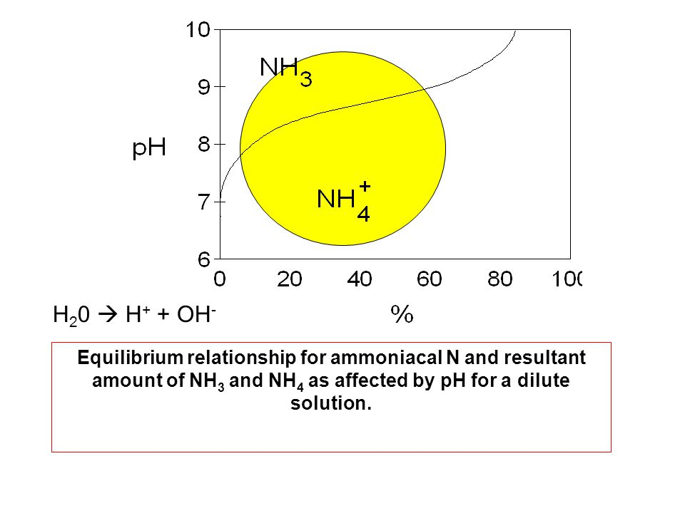 H20  H+ + OH- Equilibrium relationship for ammoniacal N and resultant amount of NH3 and NH4 as affected by pH for a dilute solution.