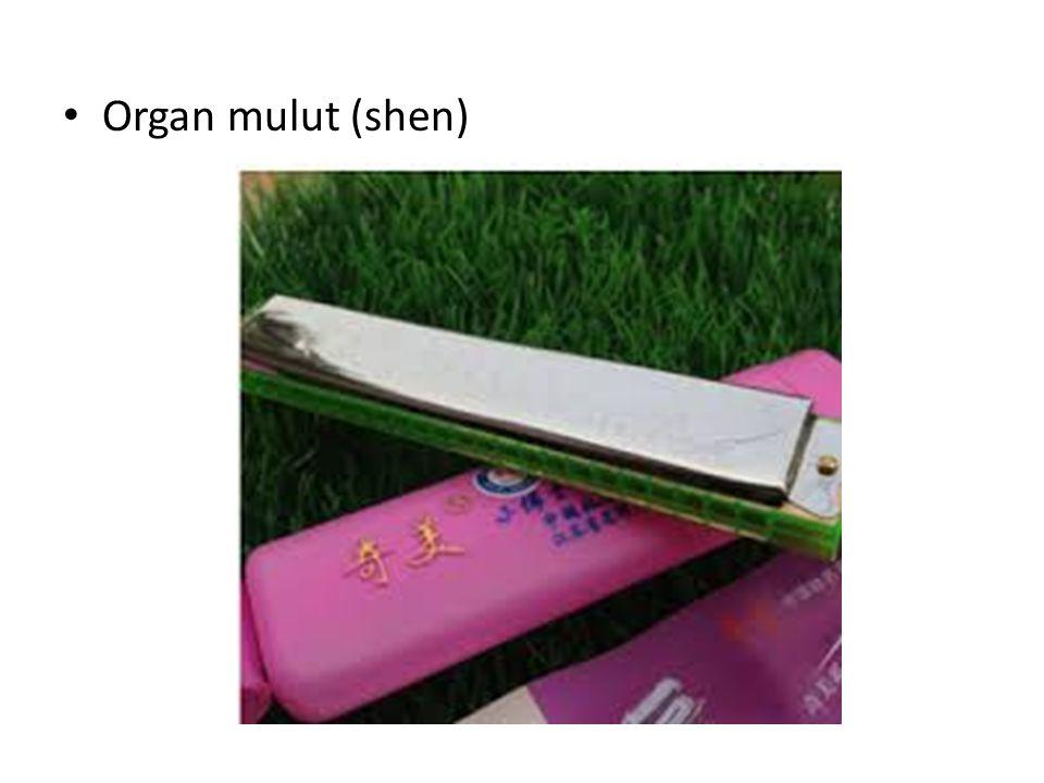 Organ mulut (shen)