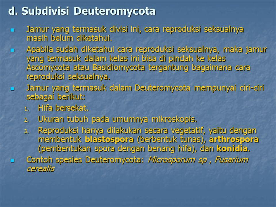 d. Subdivisi Deuteromycota