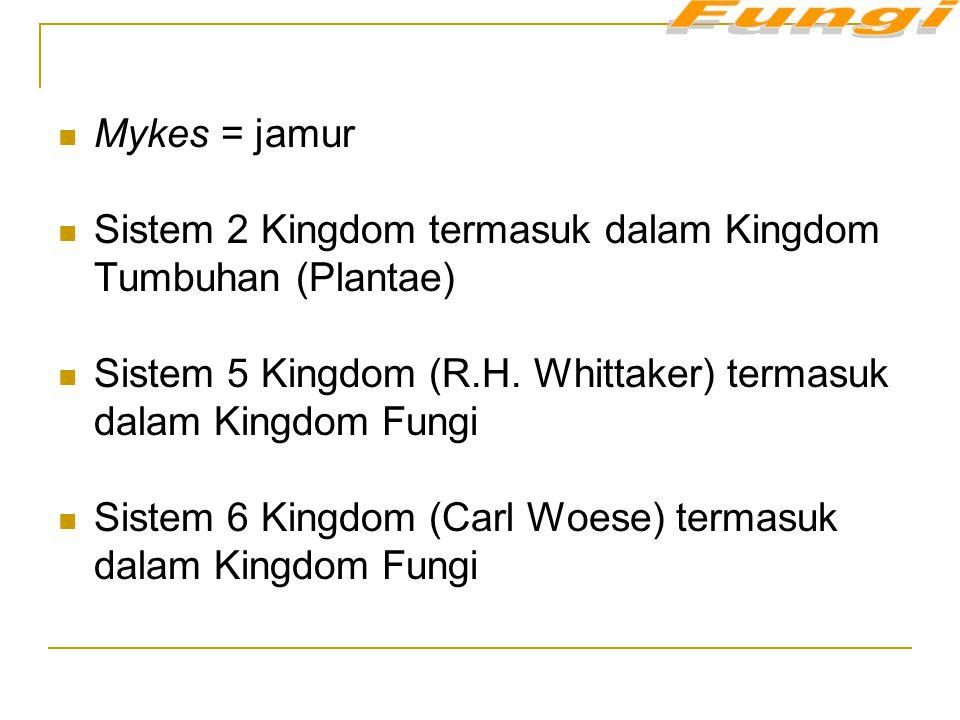 Sistem 2 Kingdom termasuk dalam Kingdom Tumbuhan (Plantae)