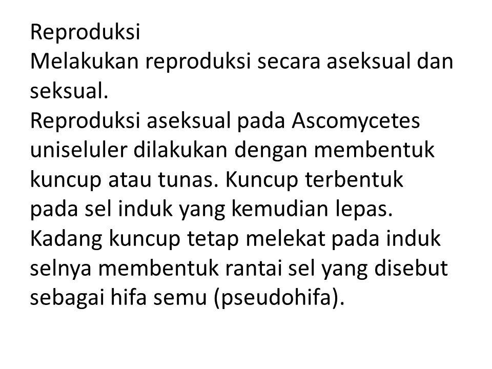 Reproduksi Melakukan reproduksi secara aseksual dan seksual