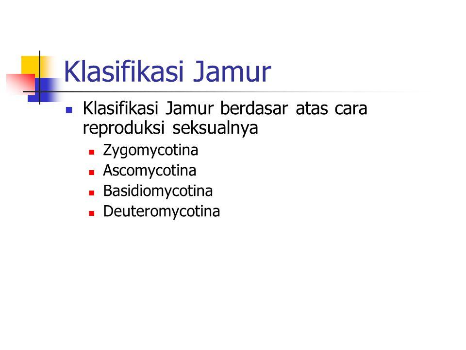 Klasifikasi Jamur Klasifikasi Jamur berdasar atas cara reproduksi seksualnya. Zygomycotina. Ascomycotina.