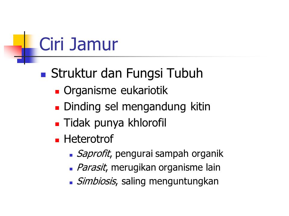 Ciri Jamur Struktur dan Fungsi Tubuh Organisme eukariotik