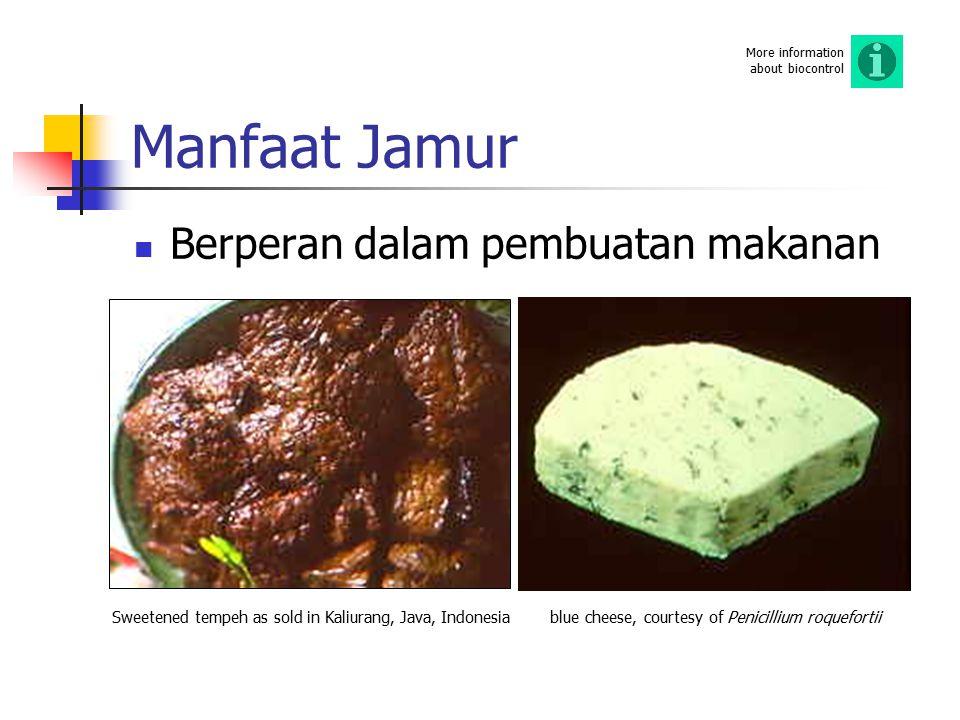Manfaat Jamur Berperan dalam pembuatan makanan