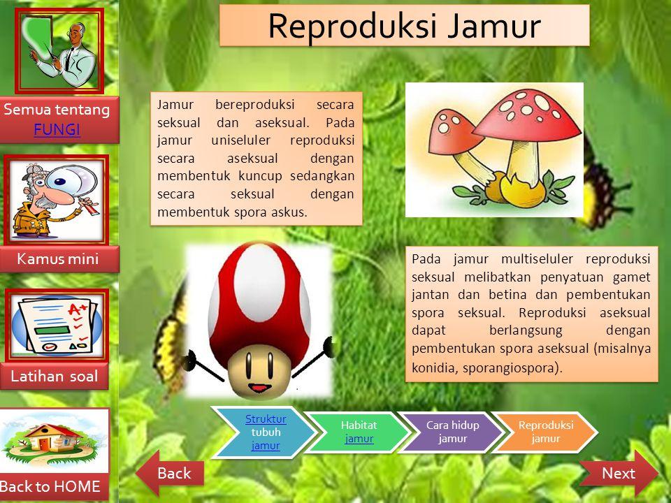 Reproduksi Jamur
