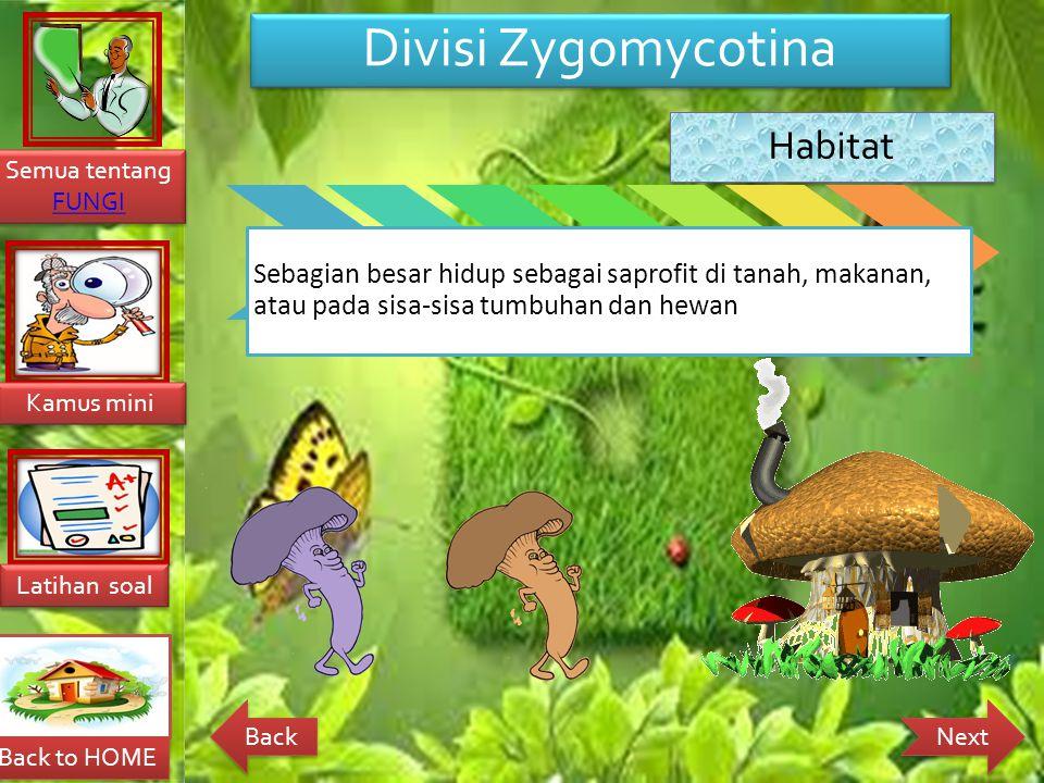 Divisi Zygomycotina Habitat.