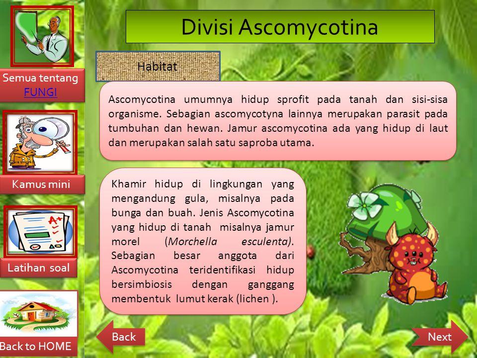 Divisi Ascomycotina Habitat