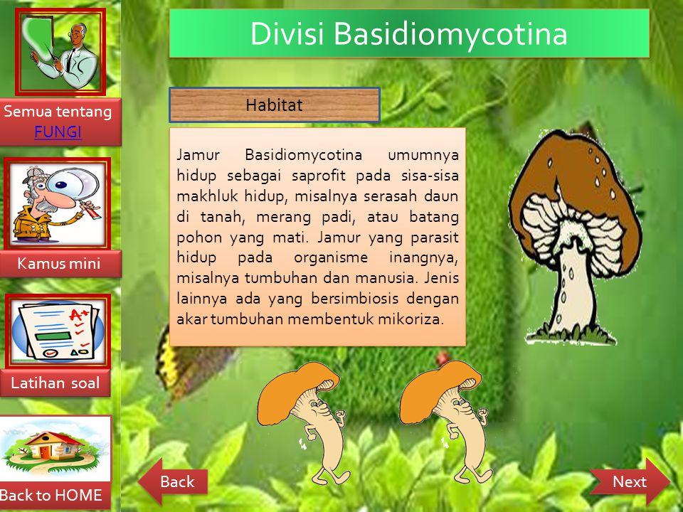 Divisi Basidiomycotina