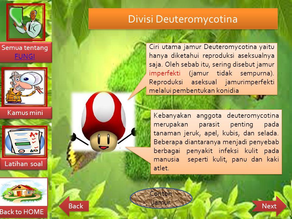 Divisi Deuteromycotina