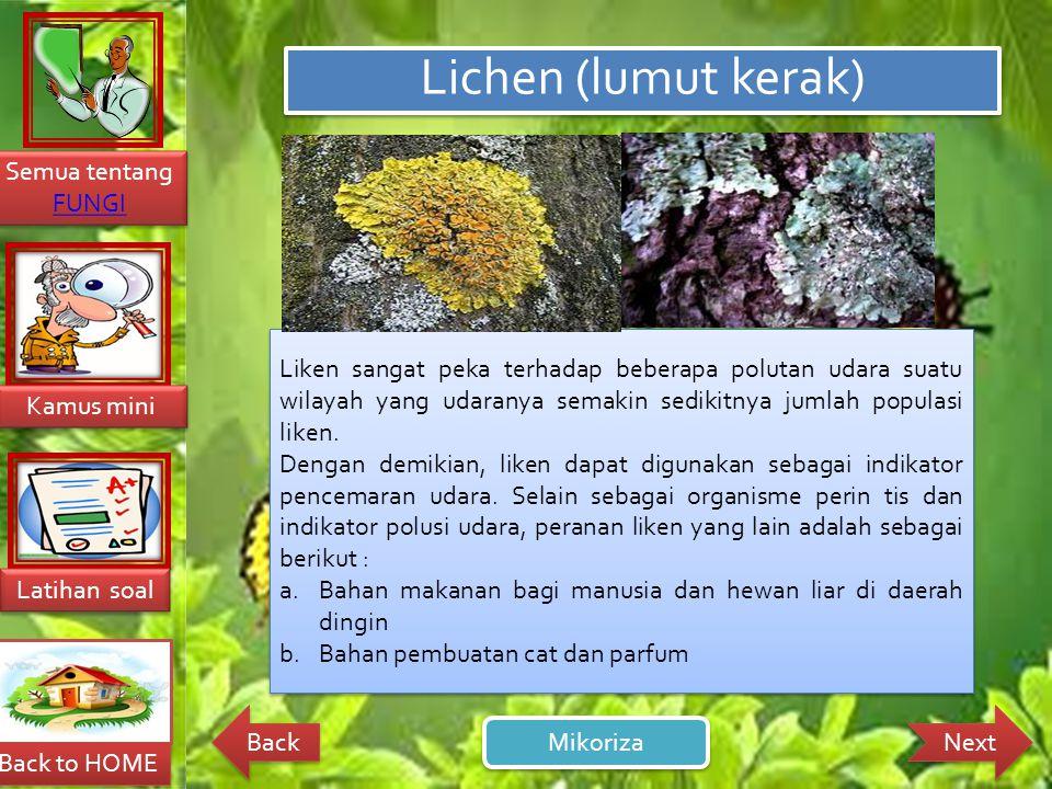 Lichen (lumut kerak) Liken sangat peka terhadap beberapa polutan udara suatu wilayah yang udaranya semakin sedikitnya jumlah populasi liken.