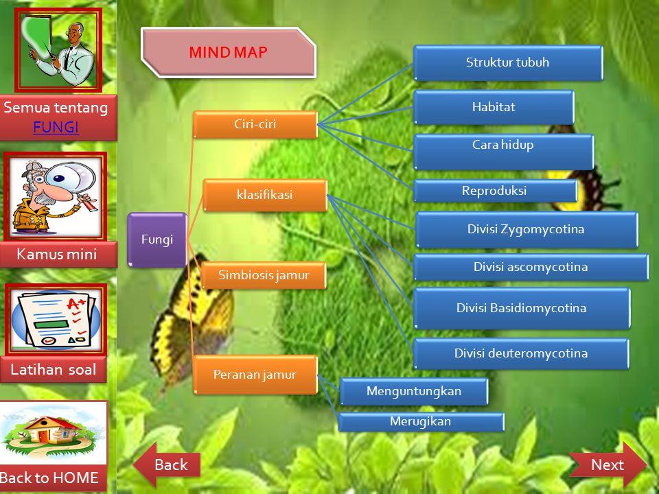 MIND MAP Fungi Ciri-ciri Struktur tubuh Habitat Cara hidup Reproduksi