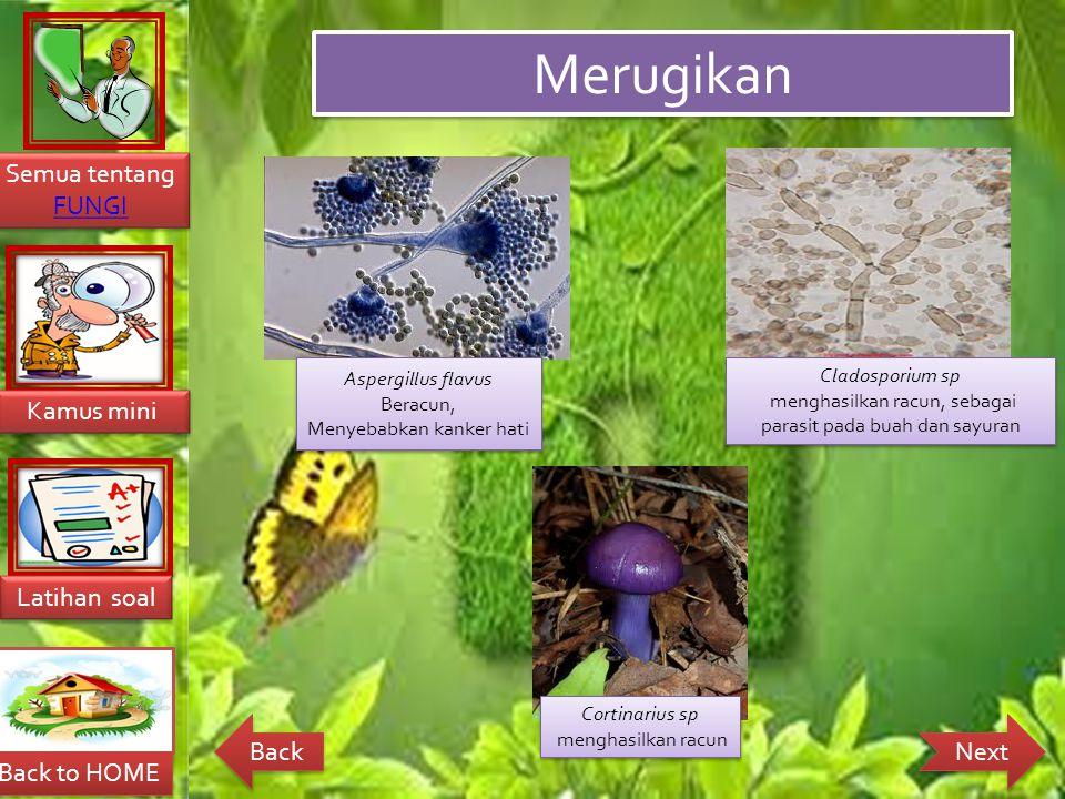 Merugikan Aspergillus flavus Cladosporium sp Beracun,