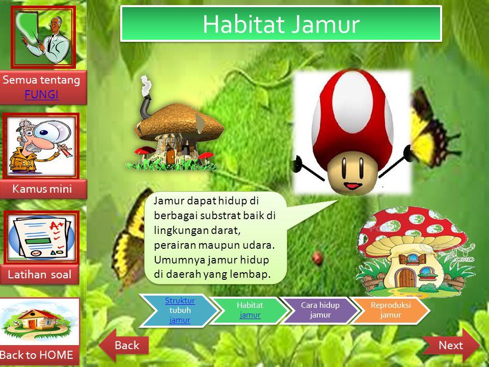Habitat Jamur Jamur dapat hidup di berbagai substrat baik di lingkungan darat, perairan maupun udara. Umumnya jamur hidup di daerah yang lembap.