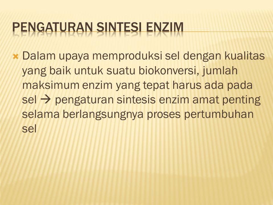 Pengaturan sintesi enzim