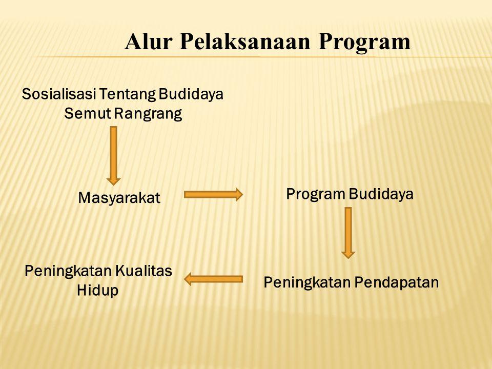 Alur Pelaksanaan Program
