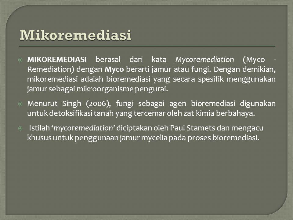 Mikoremediasi