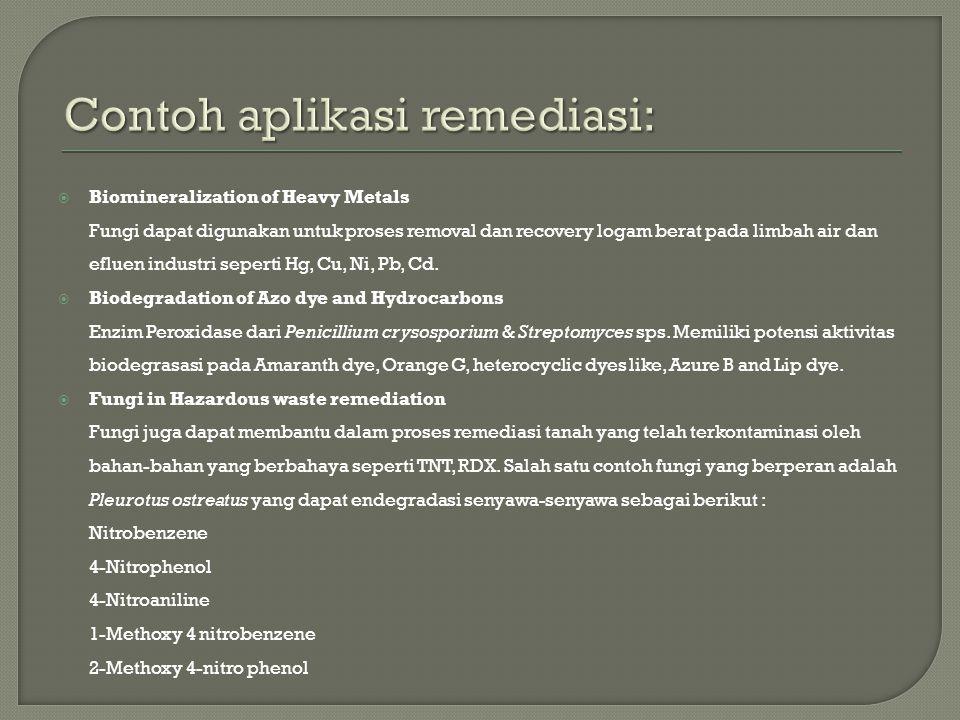 Contoh aplikasi remediasi: