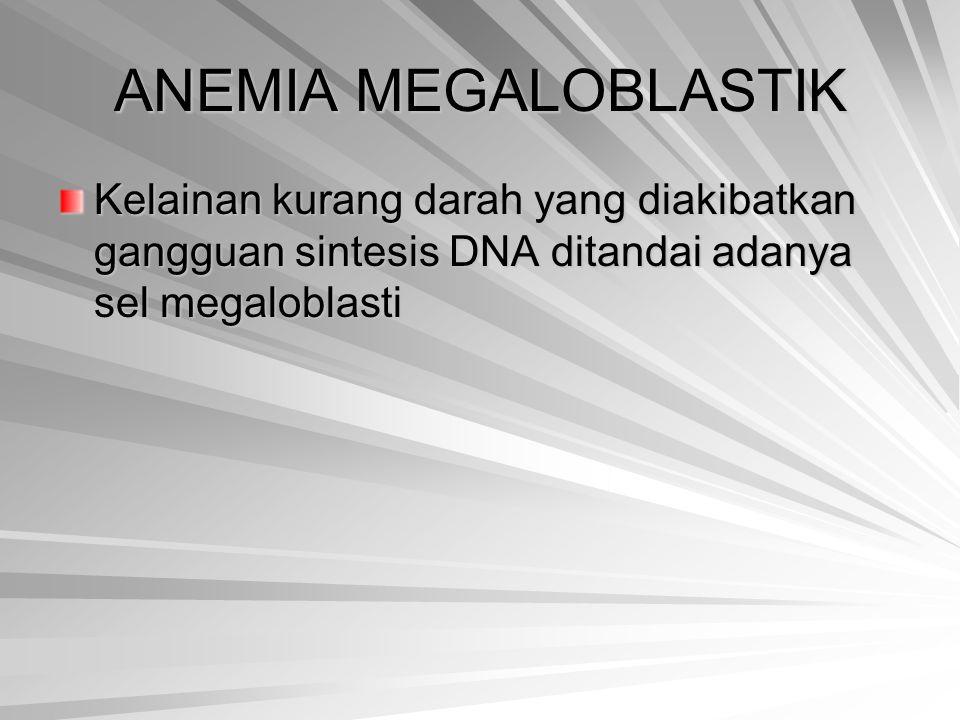 ANEMIA MEGALOBLASTIK Kelainan kurang darah yang diakibatkan gangguan sintesis DNA ditandai adanya sel megaloblasti.