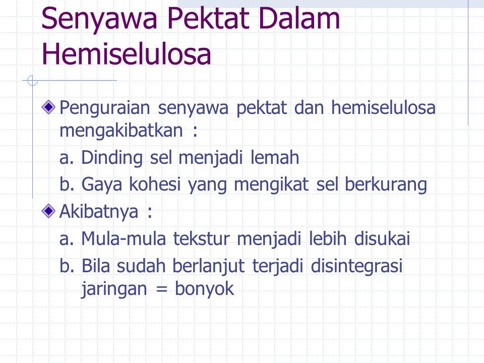 Senyawa Pektat Dalam Hemiselulosa
