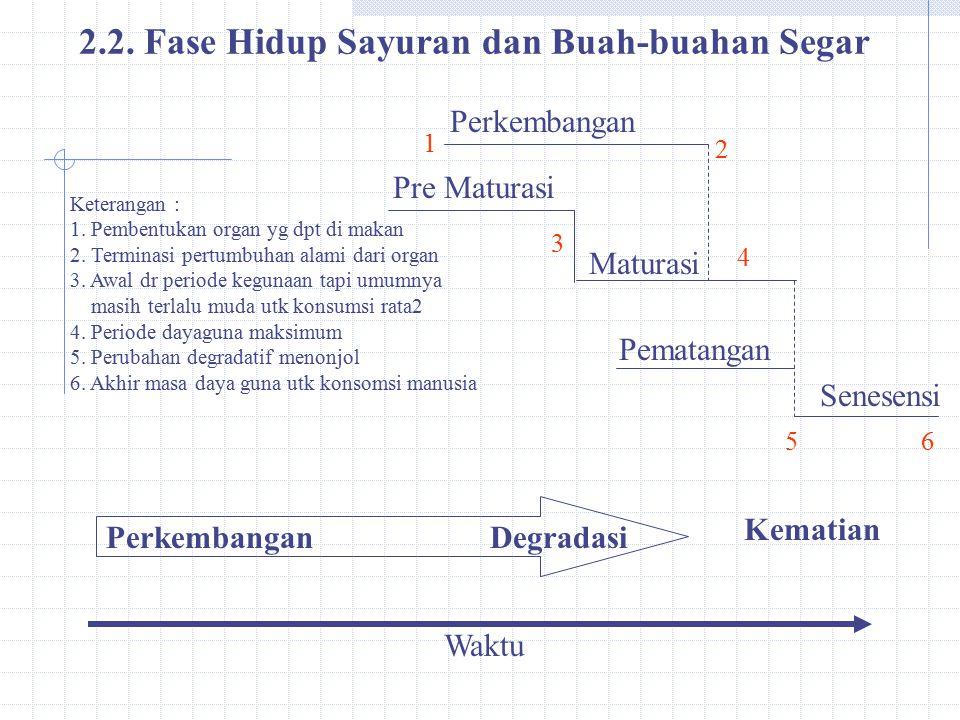 2.2. Fase Hidup Sayuran dan Buah-buahan Segar