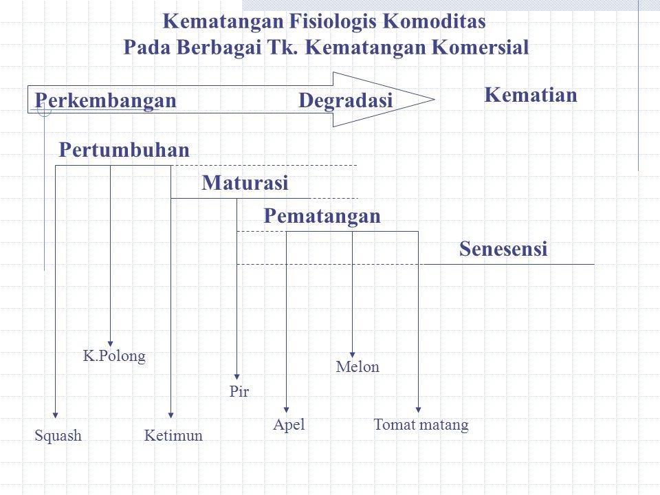 Kematangan Fisiologis Komoditas Pada Berbagai Tk. Kematangan Komersial