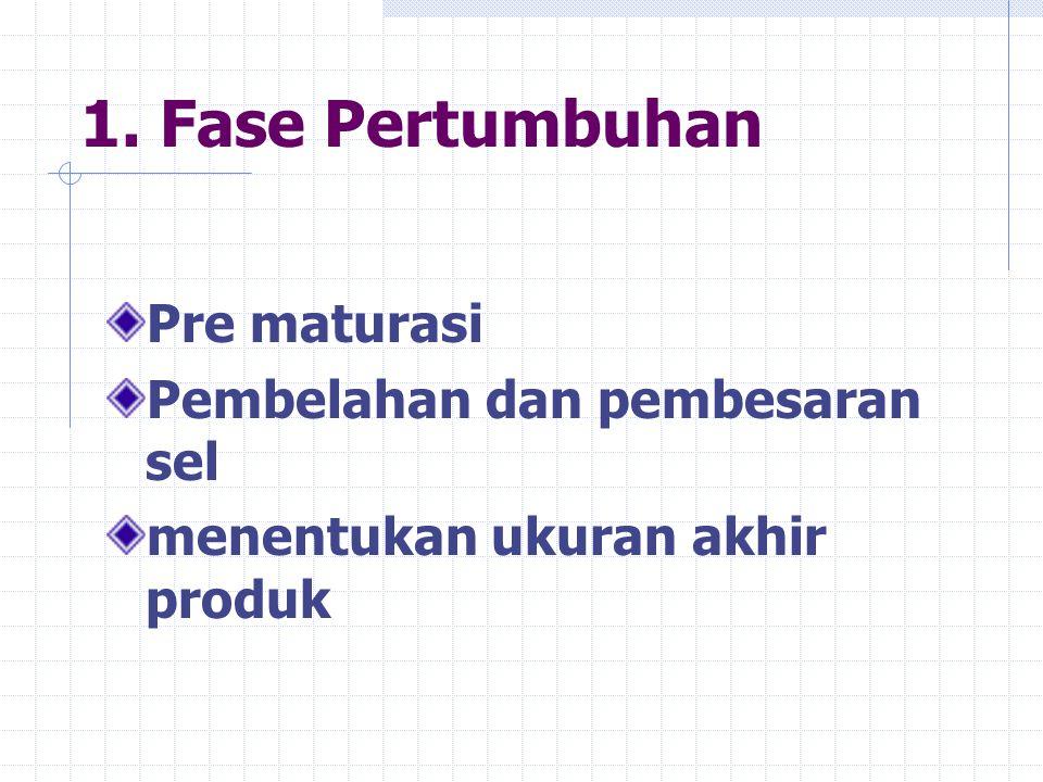 1. Fase Pertumbuhan Pre maturasi Pembelahan dan pembesaran sel