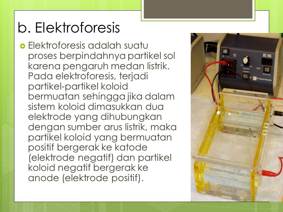 b. Elektroforesis