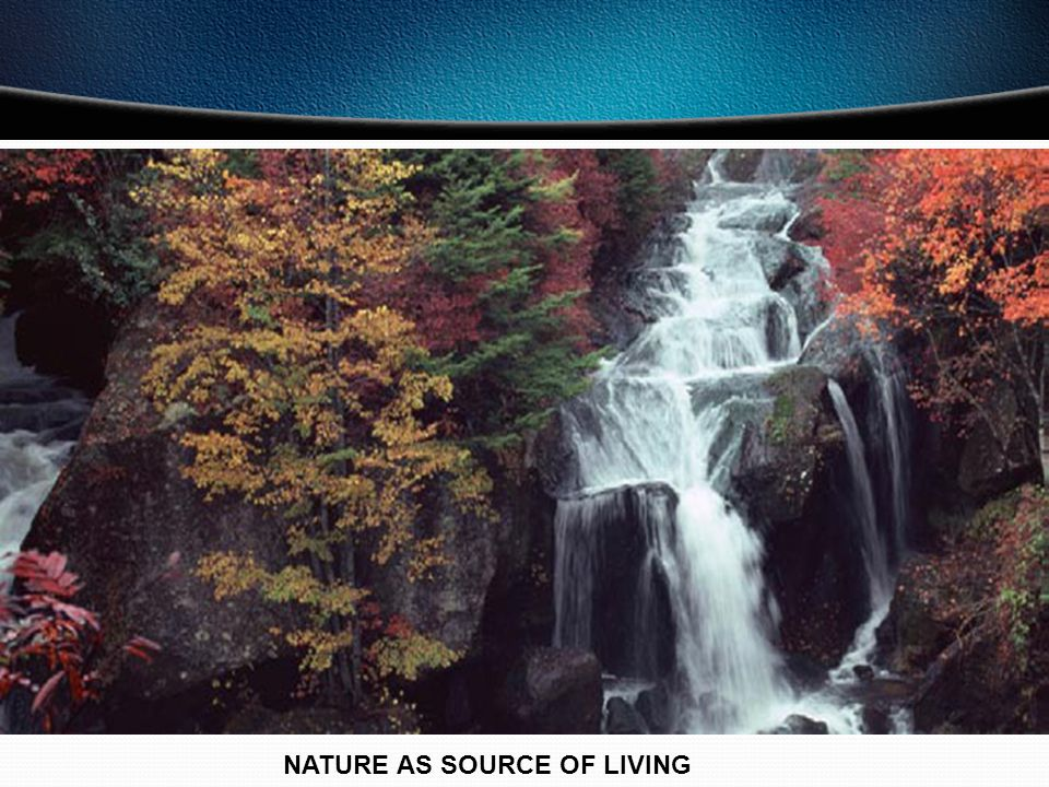NATURE AS SOURCE OF LIVING