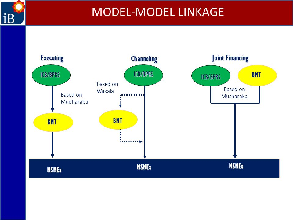 MODEL-MODEL LINKAGE Executing Joint Financing Channeling ICB/BPRS BMT