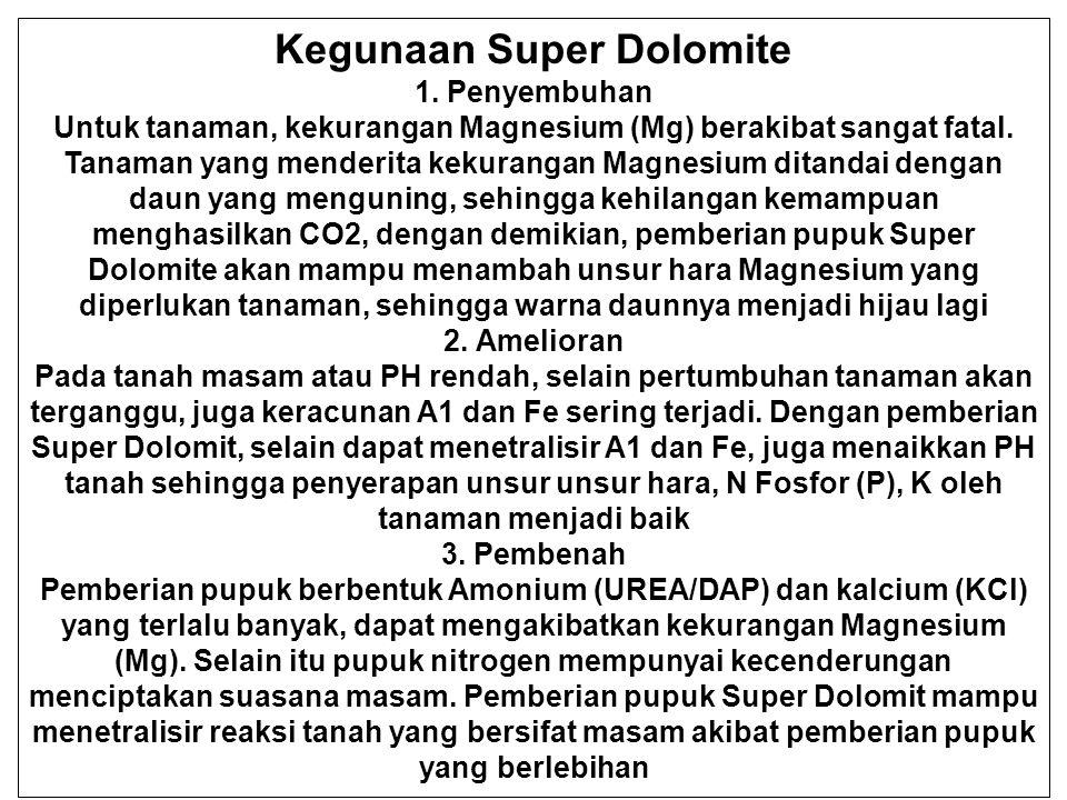 Kegunaan Super Dolomite