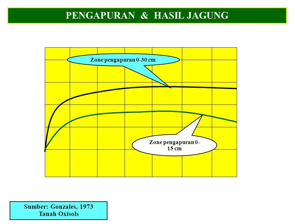 PENGAPURAN & HASIL JAGUNG