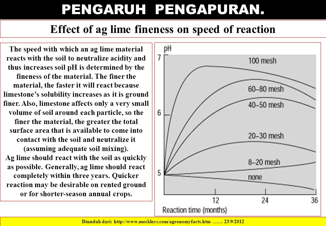PENGARUH PENGAPURAN. Effect of ag lime fineness on speed of reaction
