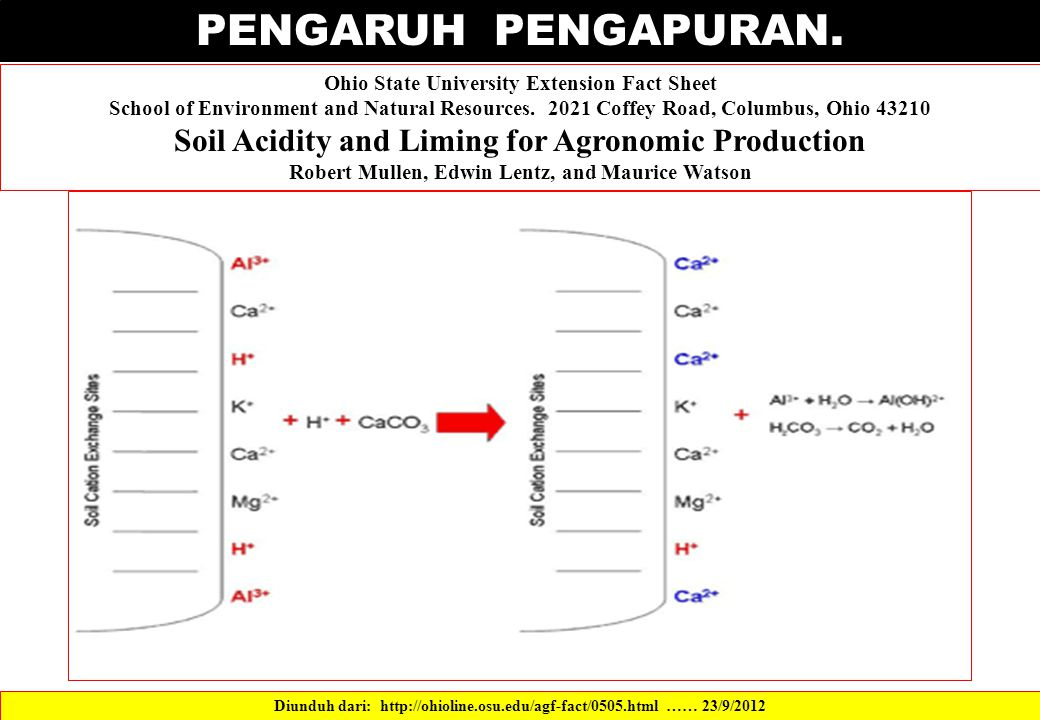 PENGARUH PENGAPURAN. Soil Acidity and Liming for Agronomic Production