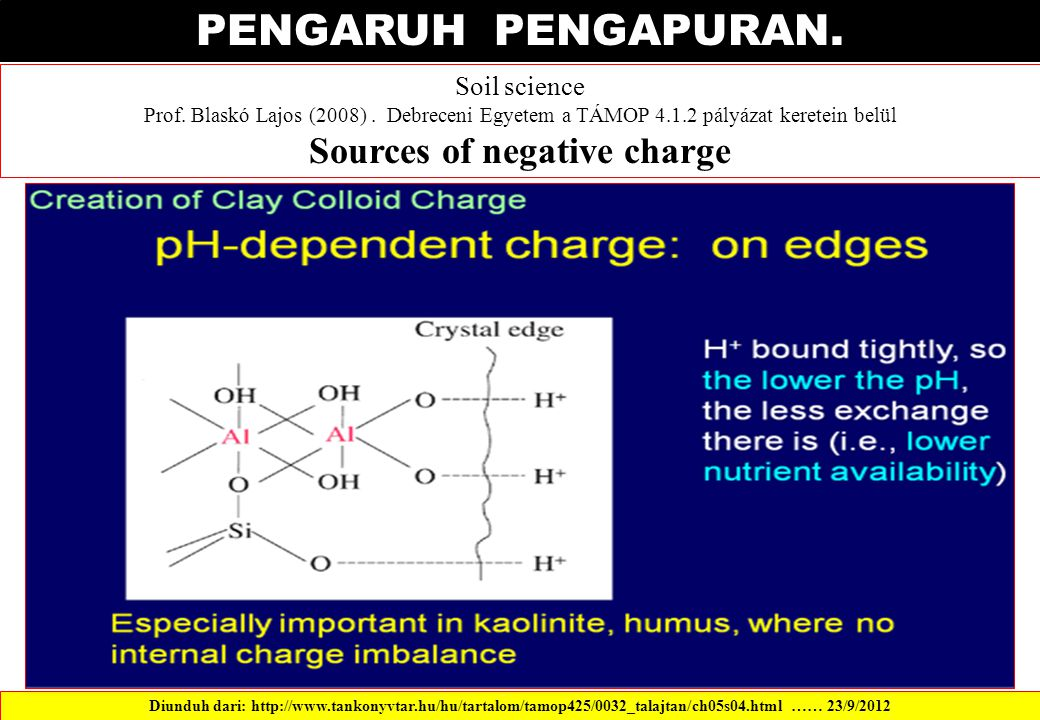 Sources of negative charge